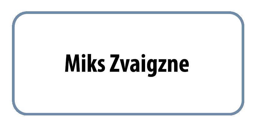 084_Miks_Zvaigzne_2015